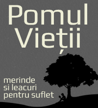 Am pierdut, am câștigat?