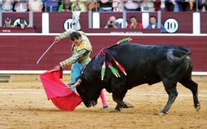 roșu, matador