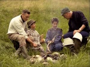 tată, fiu, bunic, foc